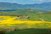 Tuscan Valley d'Orcia hills — Stock Photo