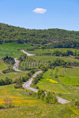 Tuscan view with local curve road — Stock Photo