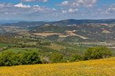 пейзаж тосканских холмов — Стоковое фото