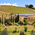 Tuscan farmhouse — Stock Photo
