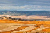 Fields and hills of Spain at winter — Stock Photo