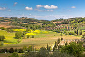 Outdoor Tuscan hills landscape — Stock Photo
