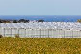 Vue d'une serre agricole — Photo