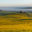 Tuscany at sunrise — Stock Photo #11955318