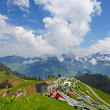 Beautiful landscape of Swiss Alps near Sans, Switzerland — Stock Photo #11122846