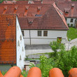 Beautiful roofs of houses in Fussen, Bavaria, Germany — Stock Photo #11244567