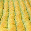 The baklava (a dessert made of thin pastry, nuts, and honey) — Stock Photo