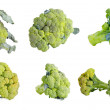 Fresh green Broccoli set isolated on a white background — Stockfoto