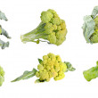 Fresh green Broccoli set isolated on a white background — ストック写真
