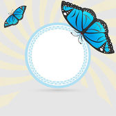 Frame with blue butterfly — Stock Vector