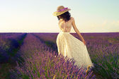 Romantic woman in fairy lavender fields — Stock Photo
