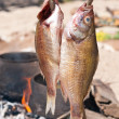 Smoked Fish - Stock Photo