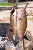 Smoked Fish — Stock Photo