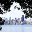 View of Seattle skyline through the tree silhouette — Stock Photo