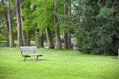 Canto tranquilo de exuberante parque verde com um banco de — Foto Stock