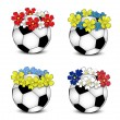 Soccer balls with floral national flags — Stock Vector #11059545