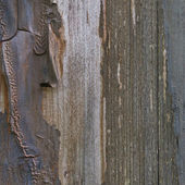 Old aged weathered grunge color-peel wood texture, detailed vert — Stock Photo