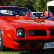 Firebird — Stock Photo #11168283