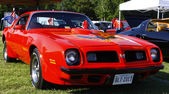 Firebird — Stock Photo