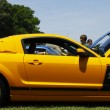 Cobra Mustang — Stock Photo