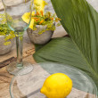 Stock Photo: Garden Table setting
