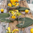 Table setting for garden party — Stock Photo