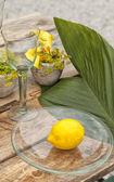 Garden Table setting — Stock Photo
