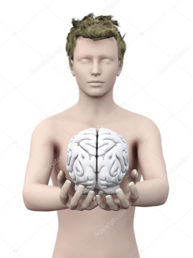 Holding a brain. 3D rendered illustration. Isolated on white.  Stock Photo #10781266