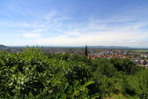 View over Freiburg im Breisgau — Stock Photo