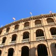 Arena of Valencia - Stock Photo