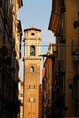 Ver en la catedral de turín — Foto de Stock
