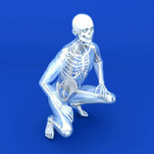 Anatomy Visualization — Stock Photo