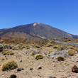 The conical volcano Mount Teide or El Teide — Stock Photo