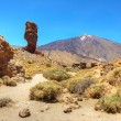 The conical volcano Mount Teide or El Teide — Foto de Stock