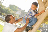 Happy Mixed Race Father Helping Son Climb a Tree — Stock Photo