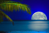 Moon reflected on the water of a tropical beach — Stock Photo