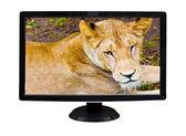 Affichage de tv montrant un lion isolé sur blanc — Photo