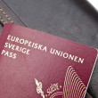 Swedish Passport and Wallet — Stock Photo