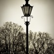 Old style street lantern with trees in background — Stock Photo