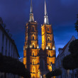 Cathedral of St. John Baptist in Wroclaw — Stock Photo #11533359