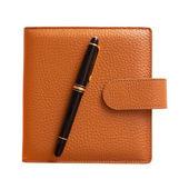 Fountain pen on diary isolated — Stock Photo