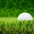 Golf ball in grass — Stockfoto