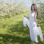 Apple Blossom Woman — Stock Photo