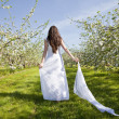 Apple Blossom Woman — Stock Photo #10837314