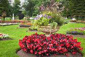 Fioriere giardino piedistallo — Foto Stock