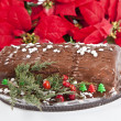 Stock Photo: Yule Log