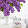 Spring Lilacs — Stock Photo #11025971