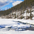 Alberta River — Stock Photo