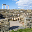 Delos Amphora - Stock Photo