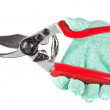 Royalty-Free Stock Photo: Garden Secateurs